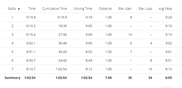 7 mile run splits